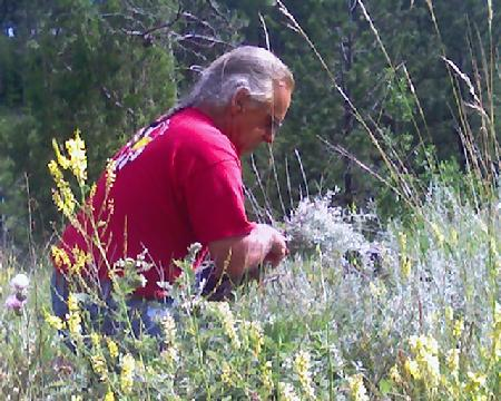 Native American drum maker picks sage